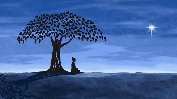 budha-tree